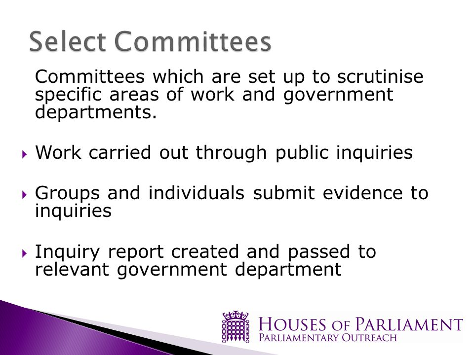Committees which are set up to scrutinise specific areas of work and government departments.