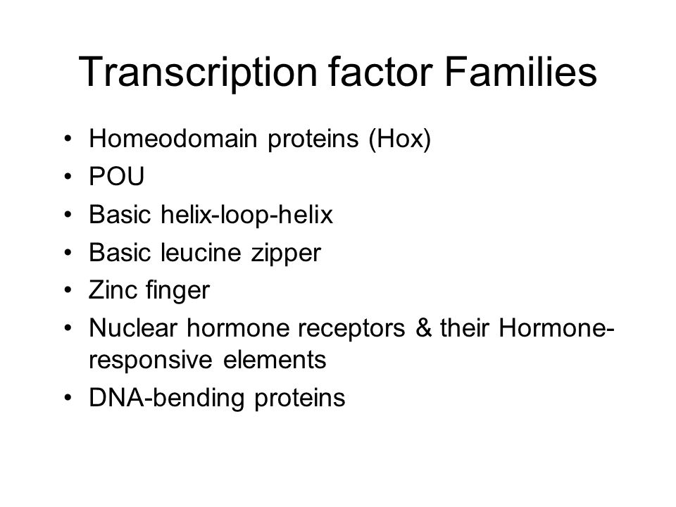 Transcription factor Families Homeodomain proteins (Hox) POU Basic helix-loop-helix Basic leucine zipper Zinc finger Nuclear hormone receptors & their Hormone- responsive elements DNA-bending proteins