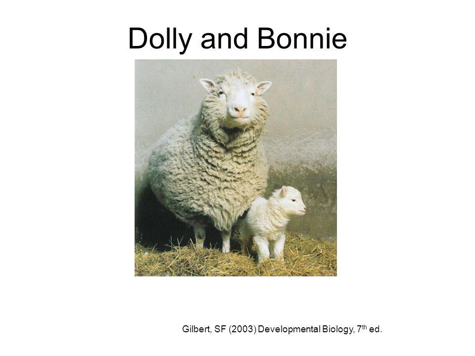 Dolly and Bonnie Gilbert, SF (2003) Developmental Biology, 7 th ed.