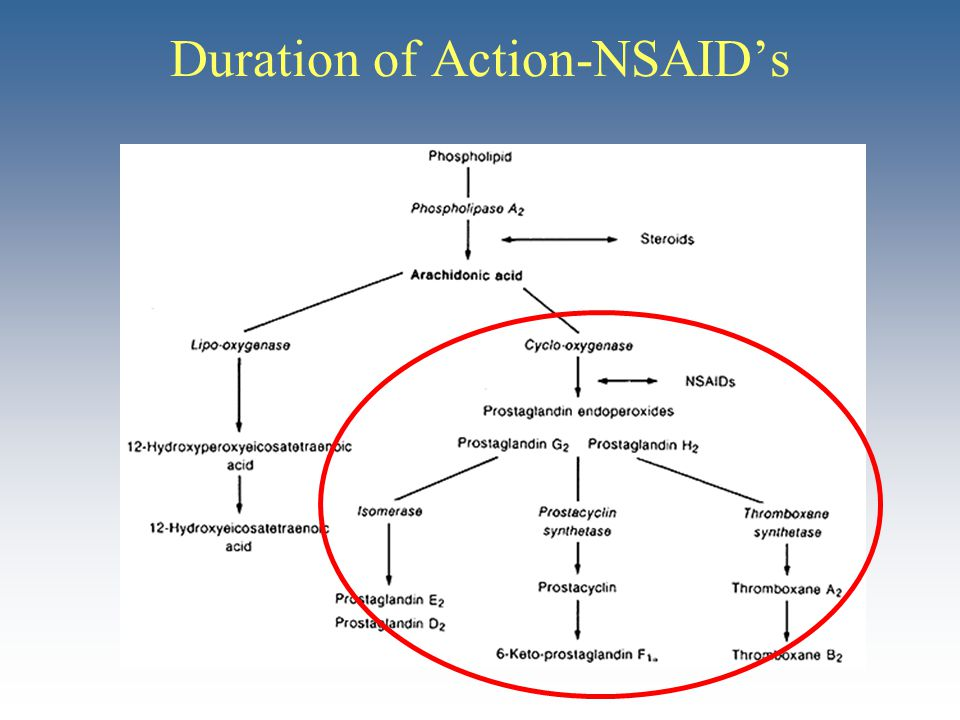 Duration of Action-NSAID's