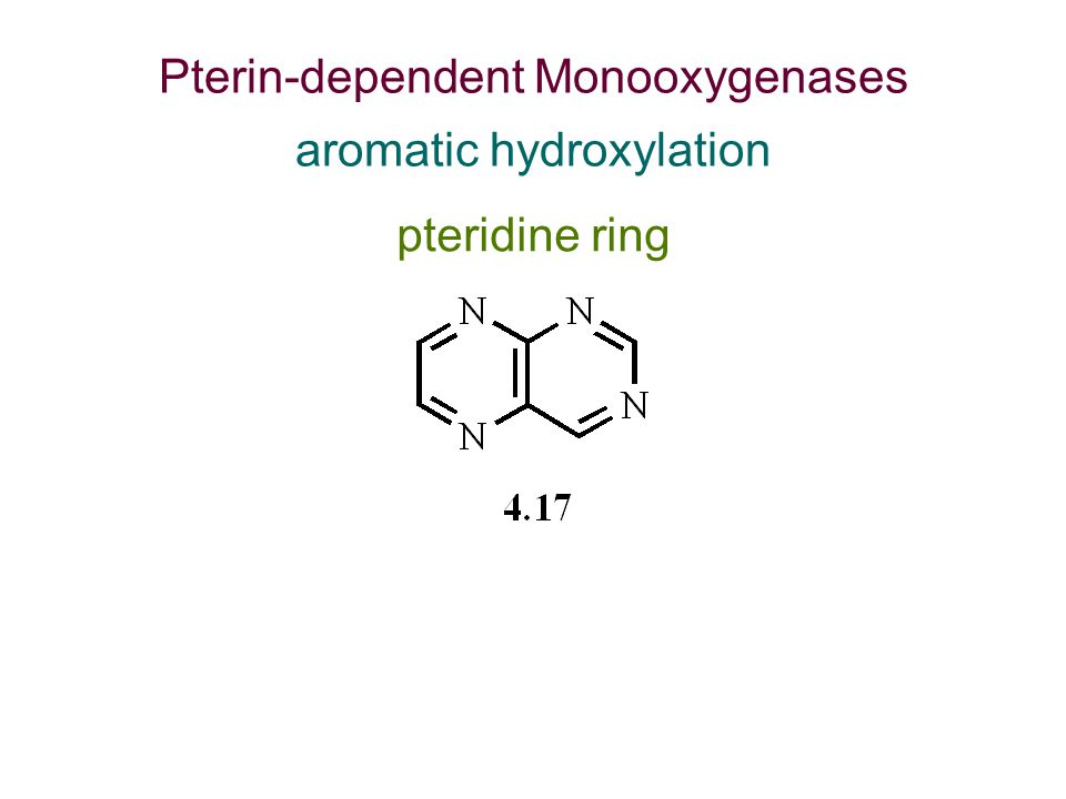 pteridine ring Pterin-dependent Monooxygenases aromatic hydroxylation
