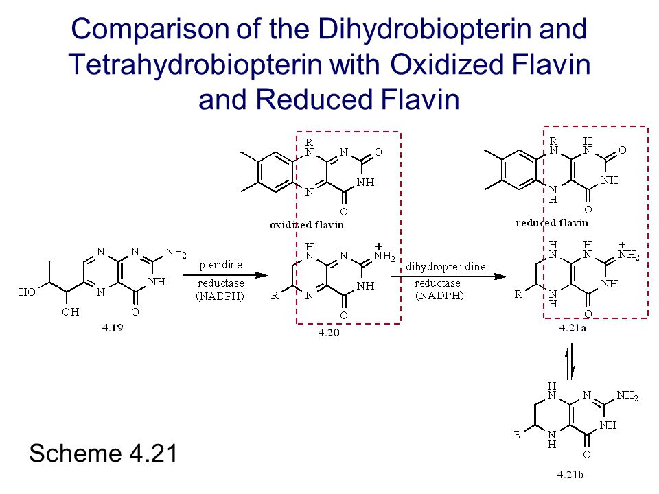 Scheme 4.21 Comparison of the Dihydrobiopterin and Tetrahydrobiopterin with Oxidized Flavin and Reduced Flavin