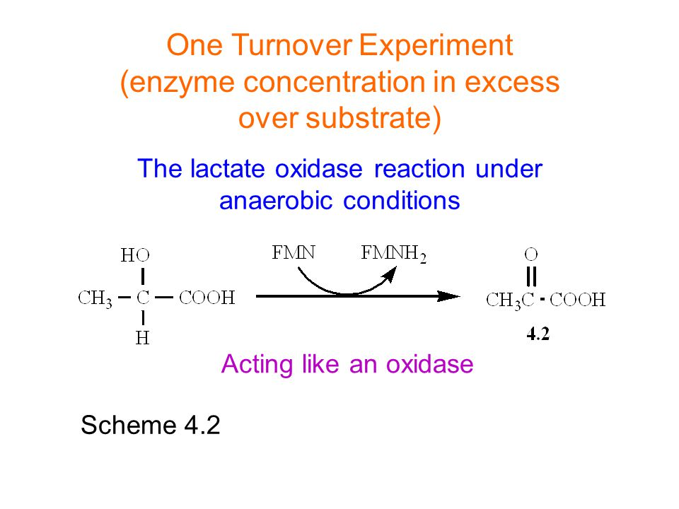 One Turnover Experiment (enzyme concentration in excess over substrate) Scheme 4.2 Acting like an oxidase The lactate oxidase reaction under anaerobic