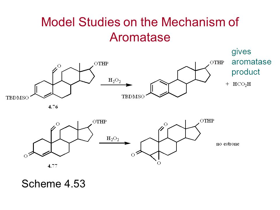 Scheme 4.53 gives aromatase product Model Studies on the Mechanism of Aromatase