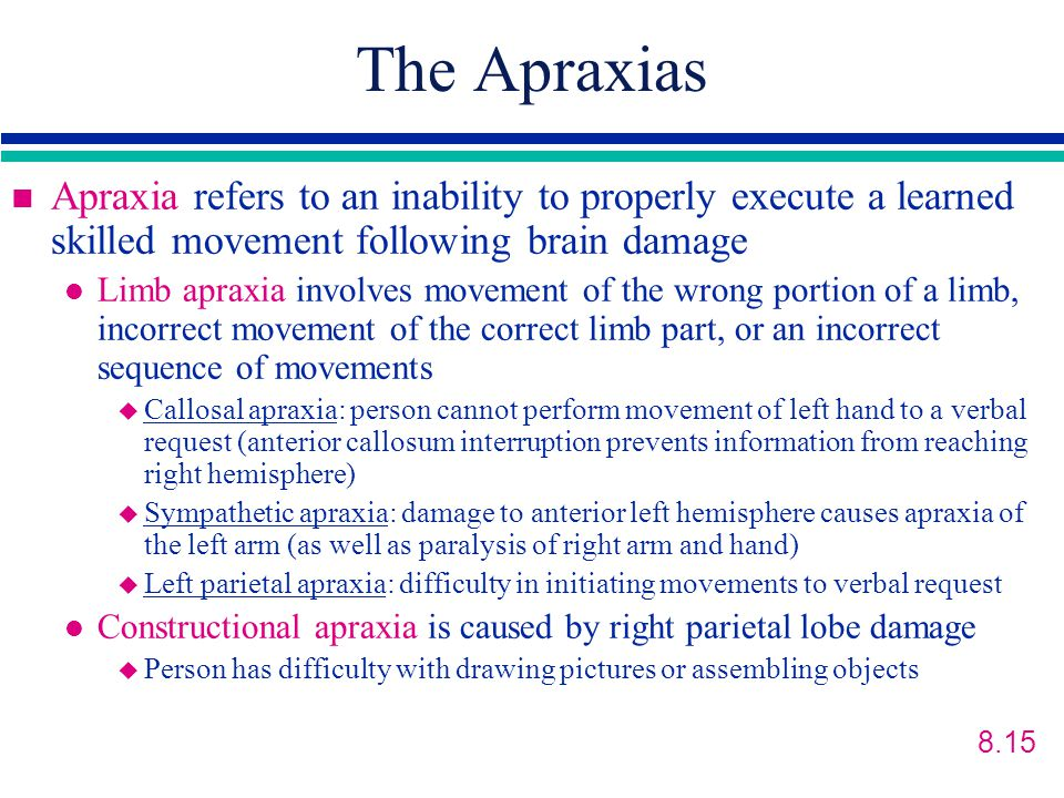 The Apraxias n Apraxia refers to an inability to properly execute a learned skilled movement following brain damage l Limb apraxia involves movement of the wrong portion of a limb, incorrect movement of the correct limb part, or an incorrect sequence of movements u Callosal apraxia: person cannot perform movement of left hand to a verbal request (anterior callosum interruption prevents information from reaching right hemisphere) u Sympathetic apraxia: damage to anterior left hemisphere causes apraxia of the left arm (as well as paralysis of right arm and hand) u Left parietal apraxia: difficulty in initiating movements to verbal request l Constructional apraxia is caused by right parietal lobe damage u Person has difficulty with drawing pictures or assembling objects 8.15