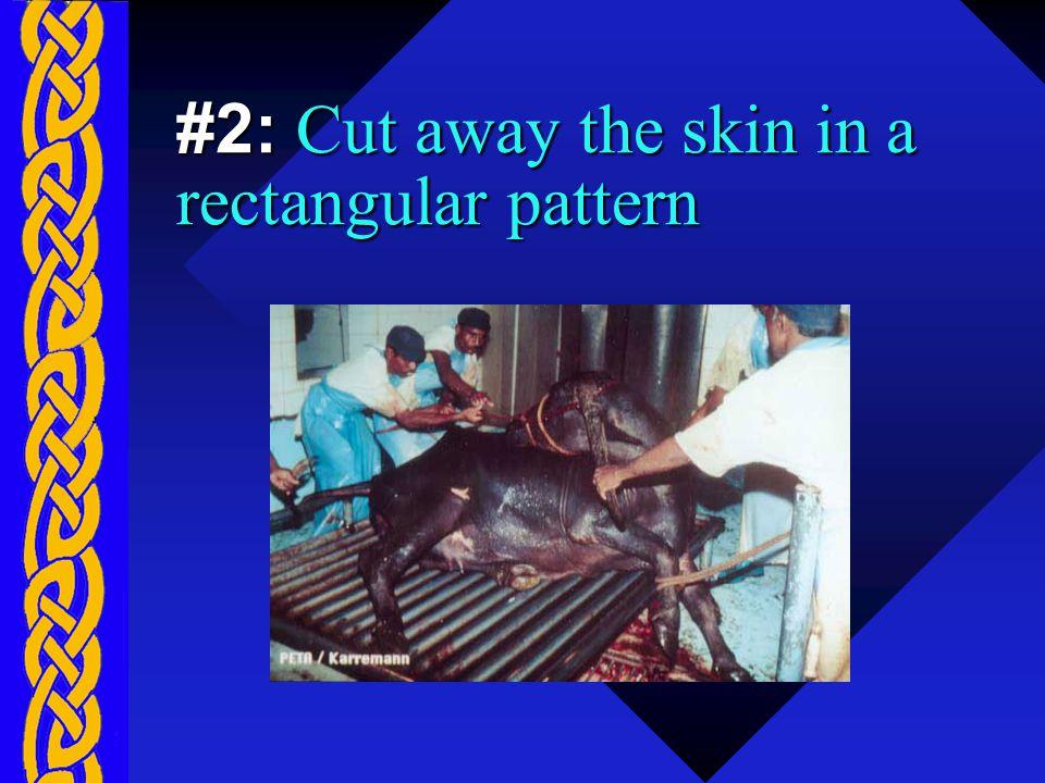 #2: Cut away the skin in a rectangular pattern