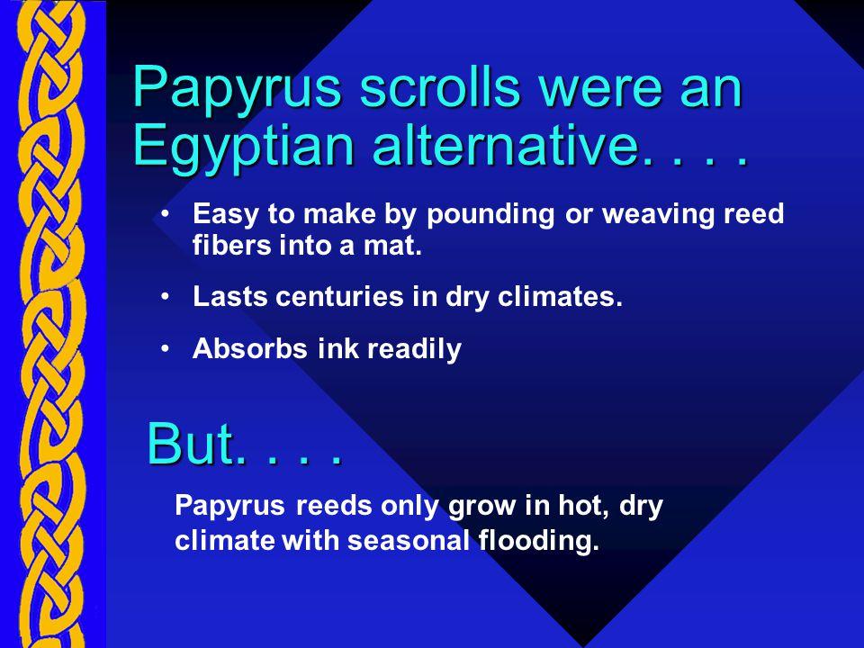 Papyrus scrolls were an Egyptian alternative....