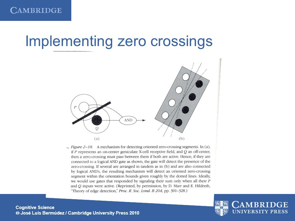 Cognitive Science  José Luis Bermúdez / Cambridge University Press 2010 Implementing zero crossings