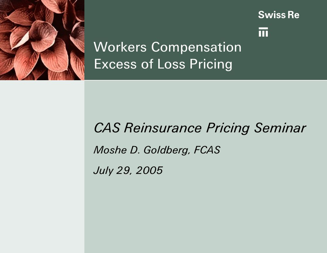 Workers Compensation Excess of Loss Pricing CAS Reinsurance Pricing Seminar Moshe D.
