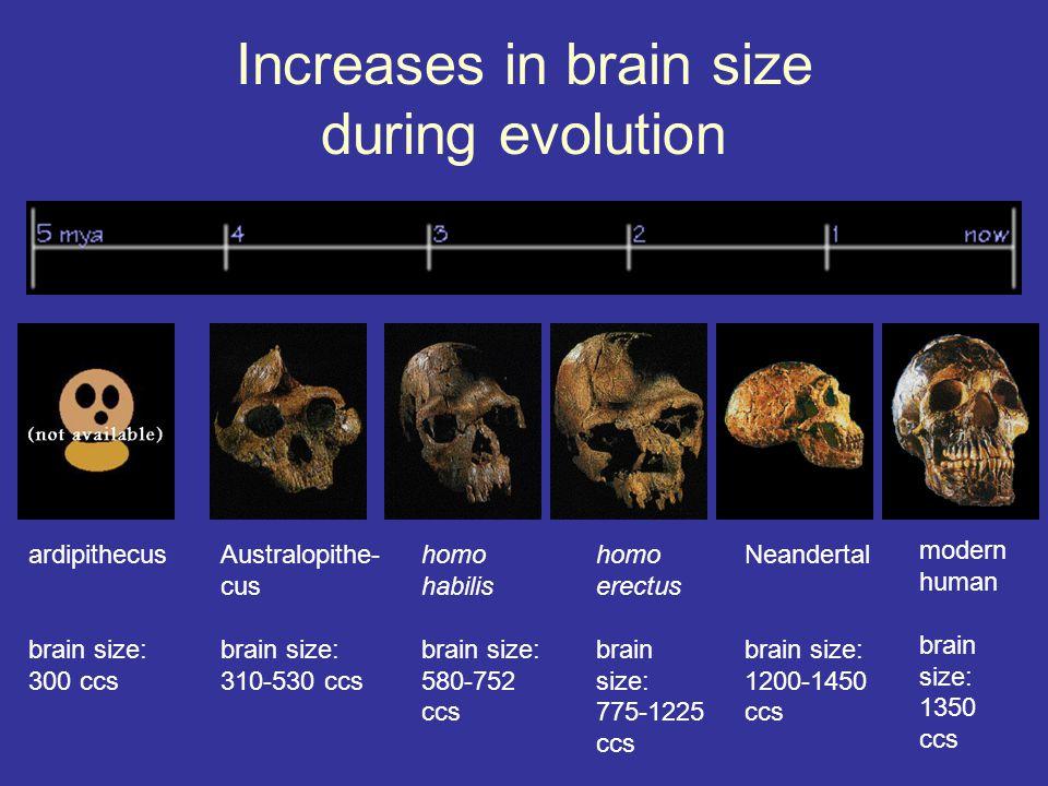Teaching Tool #6 Explain the core tenets of evolutionary psychology