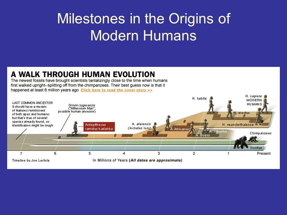 Core Tenets of Evolutionary Psychology 1.