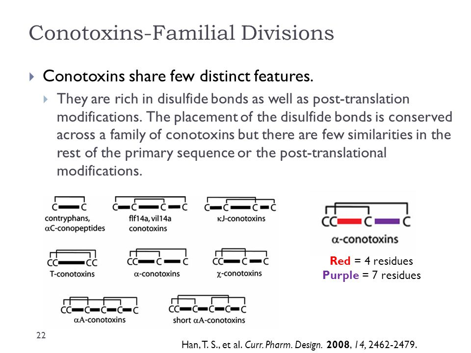 Conotoxins-Familial Divisions  Conotoxins share few distinct features.