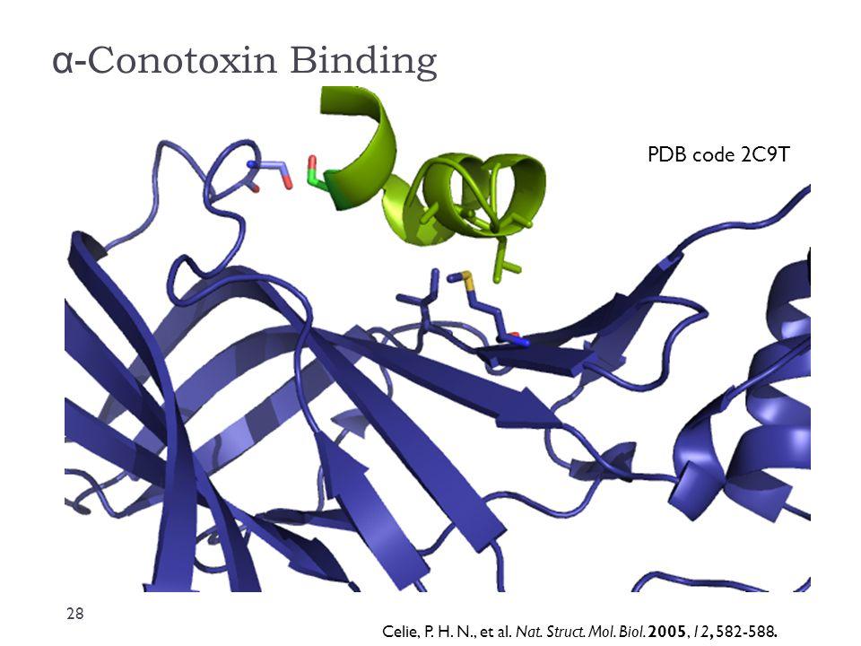 α- Conotoxin Binding PDB code 2C9T Celie, P. H. N., et al. Nat. Struct. Mol. Biol. 2005, 12, 582-588. 28