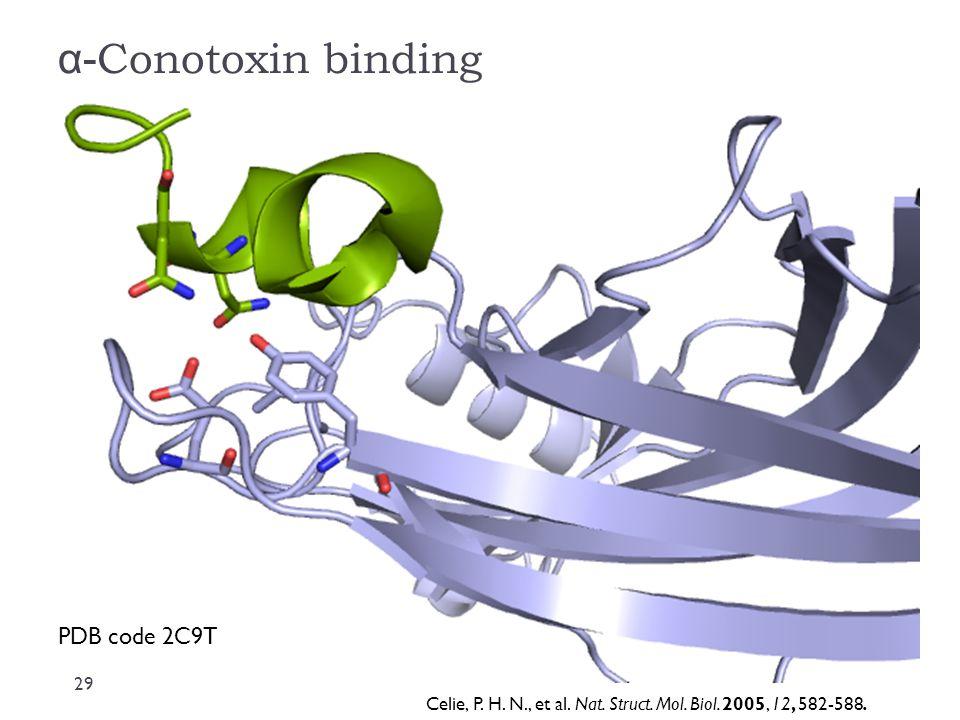 α- Conotoxin binding PDB code 2C9T Celie, P. H. N., et al. Nat. Struct. Mol. Biol. 2005, 12, 582-588. 29