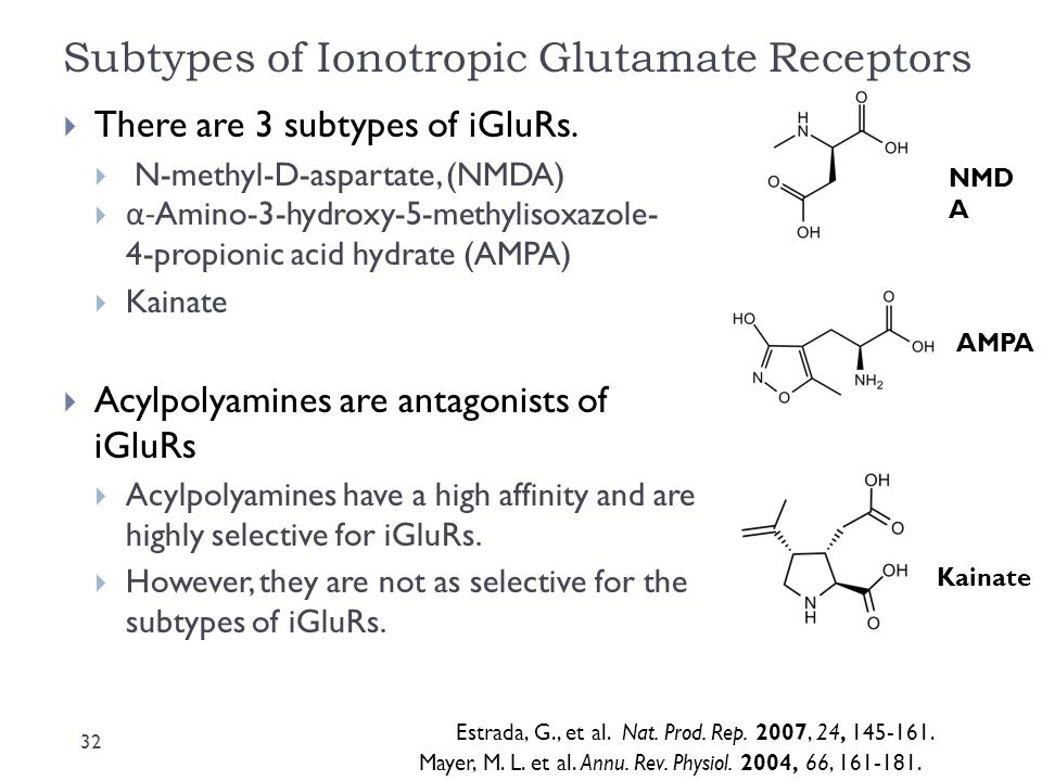 Subtypes of Ionotropic Glutamate Receptors  There are 3 subtypes of iGluRs.