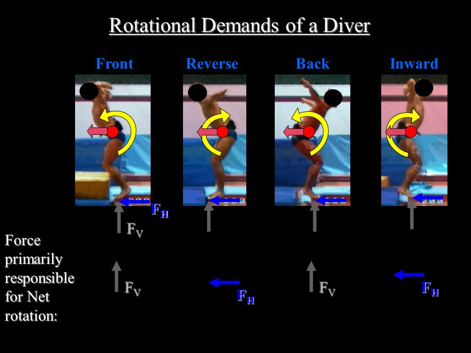 FrontBackInwardReverse Rotational Demands of a Diver FVFVFVFV FHFHFHFH Force primarily responsible for Net rotation: FVFVFVFV FHFHFHFH FVFVFVFV FHFHFHFH