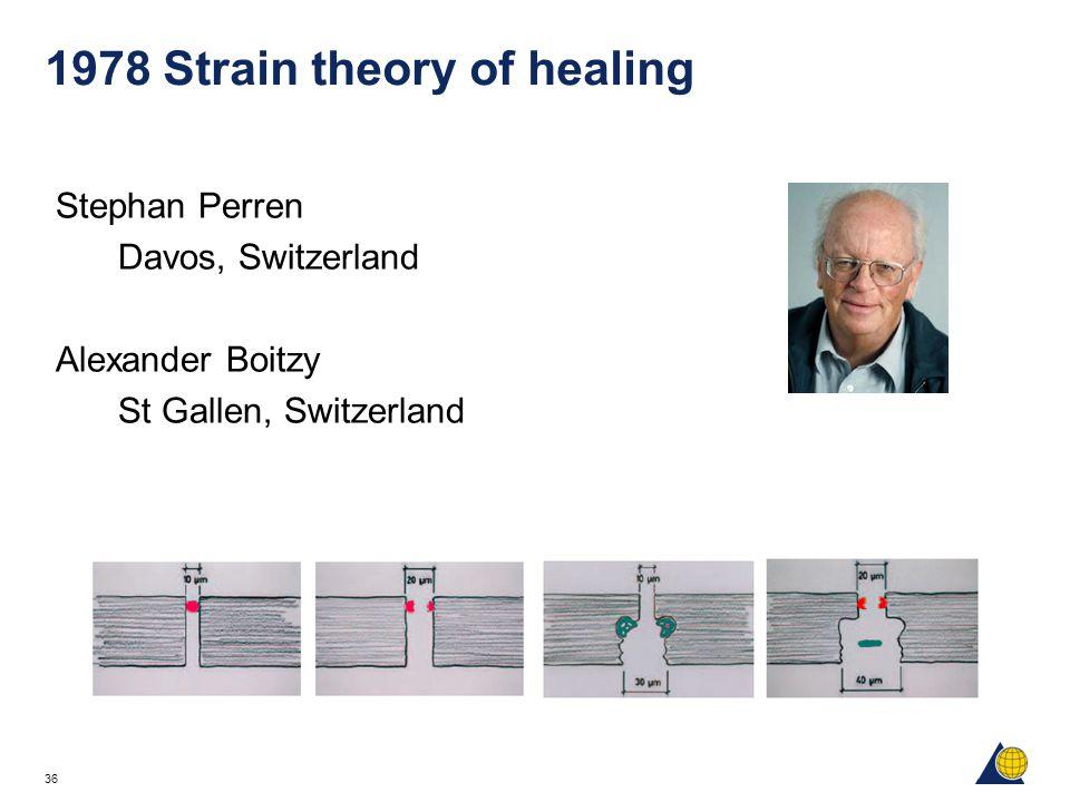 36 1978 Strain theory of healing Stephan Perren Davos, Switzerland Alexander Boitzy St Gallen, Switzerland
