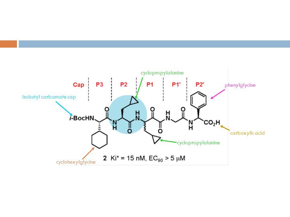 cyclopropylalanine cyclohexylglycine isobutyl carbamate cap phenylglycine carboxylic acid