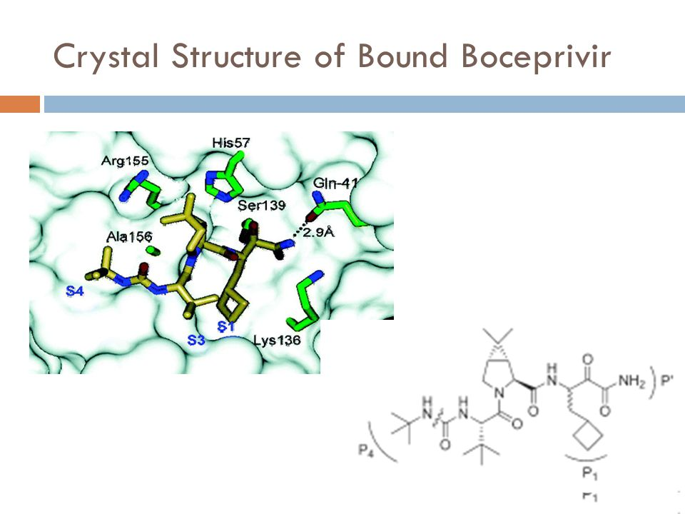 Crystal Structure of Bound Boceprivir