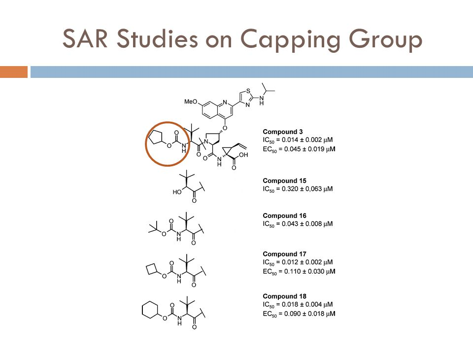 SAR Studies on Capping Group