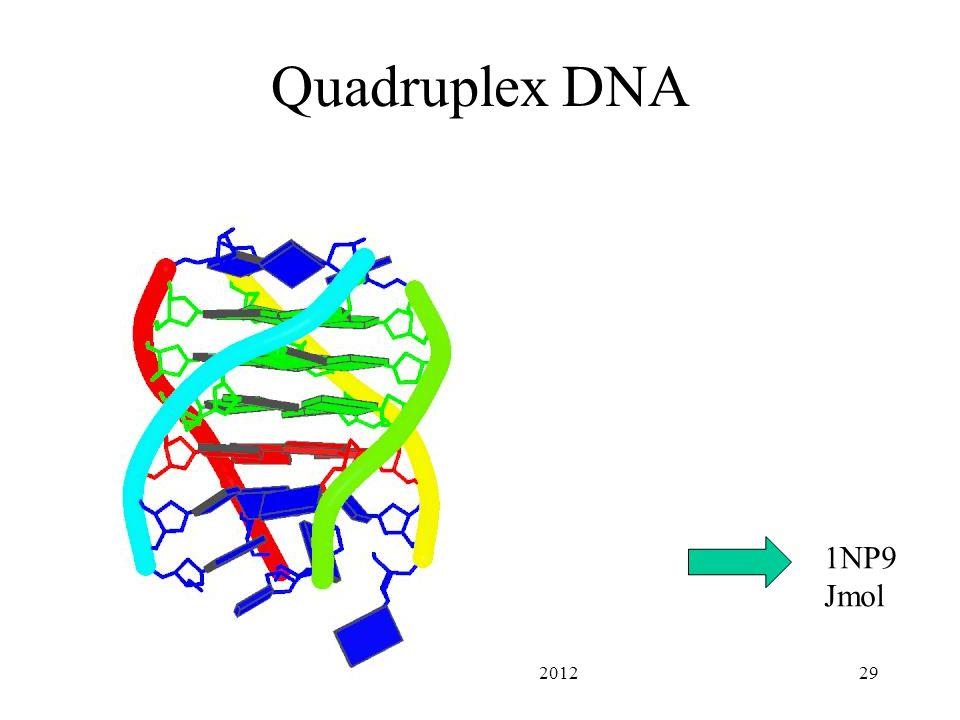 PHAR201 Lecture 2 201229 Quadruplex DNA 1NP9 Jmol