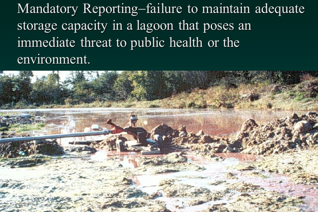 Mandatory Reportingfailure to maintain adequate storage capacity in a lagoon that poses an immediate threat to public health or the environment.