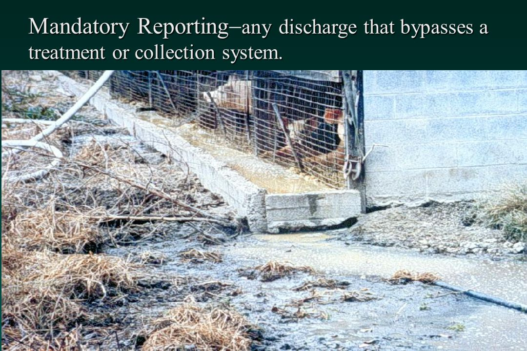 Mandatory Reporting any discharge that bypasses a treatment or collection system.