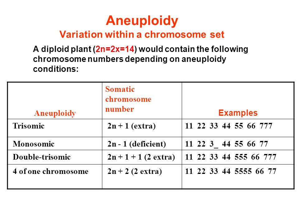 Aneuploidy Variation within a chromosome set Aneuploidy Somatic chromosome number Examples Trisomic 2n + 1 (extra)11 22 33 44 55 66 777 Monosomic 2n -