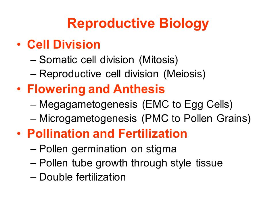 Reproductive Biology Cell Division –Somatic cell division (Mitosis) –Reproductive cell division (Meiosis) Flowering and Anthesis –Megagametogenesis (EMC to Egg Cells) –Microgametogenesis (PMC to Pollen Grains) Pollination and Fertilization –Pollen germination on stigma –Pollen tube growth through style tissue –Double fertilization