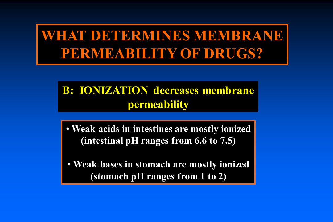 WHAT DETERMINES MEMBRANE PERMEABILITY OF DRUGS.