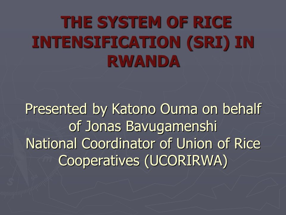 THE SYSTEM OF RICE INTENSIFICATION (SRI) IN RWANDA Presented by Katono Ouma on behalf of Jonas Bavugamenshi National Coordinator of Union of Rice Coop