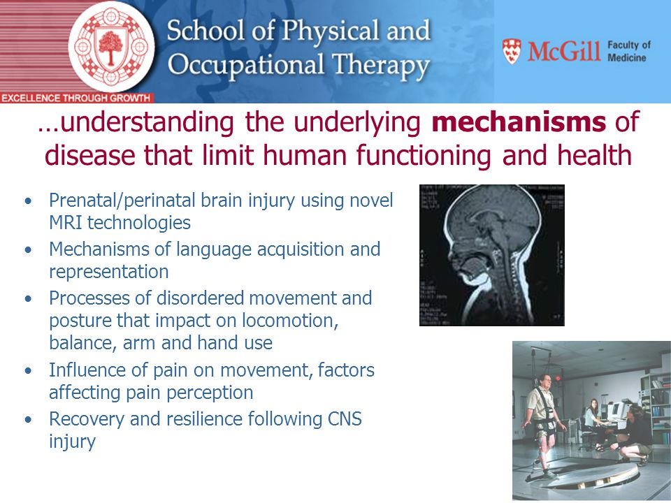 …understanding the underlying mechanisms of disease that limit human functioning and health Prenatal/perinatal brain injury using novel MRI technologies Mechanisms of language acquisition and representation Processes of disordered movement and posture that impact on locomotion, balance, arm and hand use Influence of pain on movement, factors affecting pain perception Recovery and resilience following CNS injury