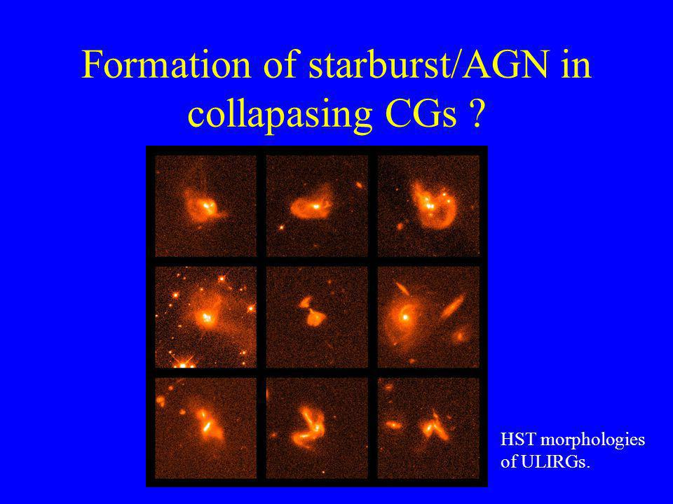 Formation of starburst/AGN in collapasing CGs HST morphologies of ULIRGs.