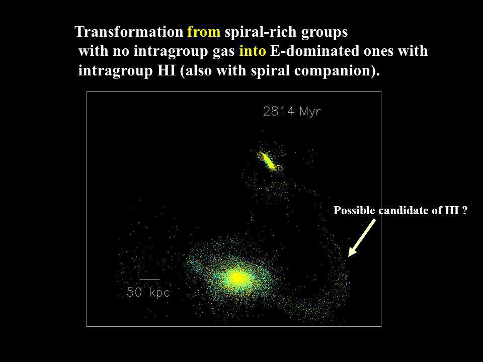 Transformation from spiral-rich groups with no intragroup gas into E-dominated ones with intragroup HI (also with spiral companion).