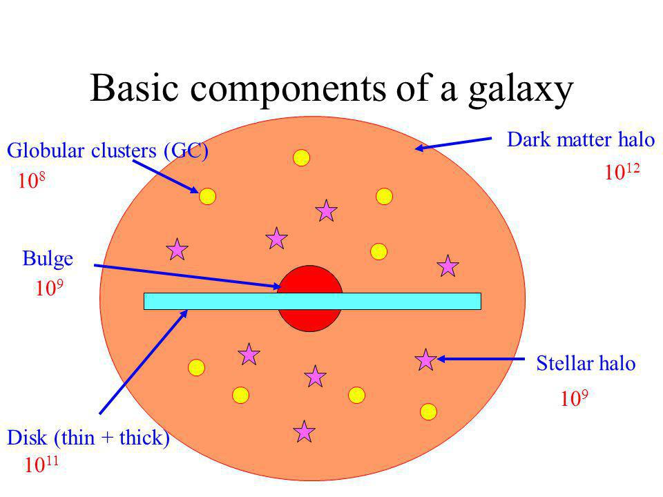 Basic components of a galaxy Globular clusters (GC) Dark matter halo Bulge Disk (thin + thick) Stellar halo