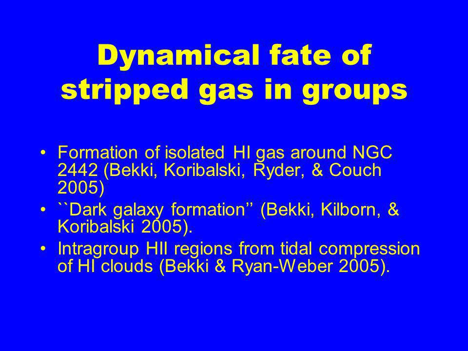 Dynamical fate of stripped gas in groups Formation of isolated HI gas around NGC 2442 (Bekki, Koribalski, Ryder, & Couch 2005) ``Dark galaxy formation'' (Bekki, Kilborn, & Koribalski 2005).