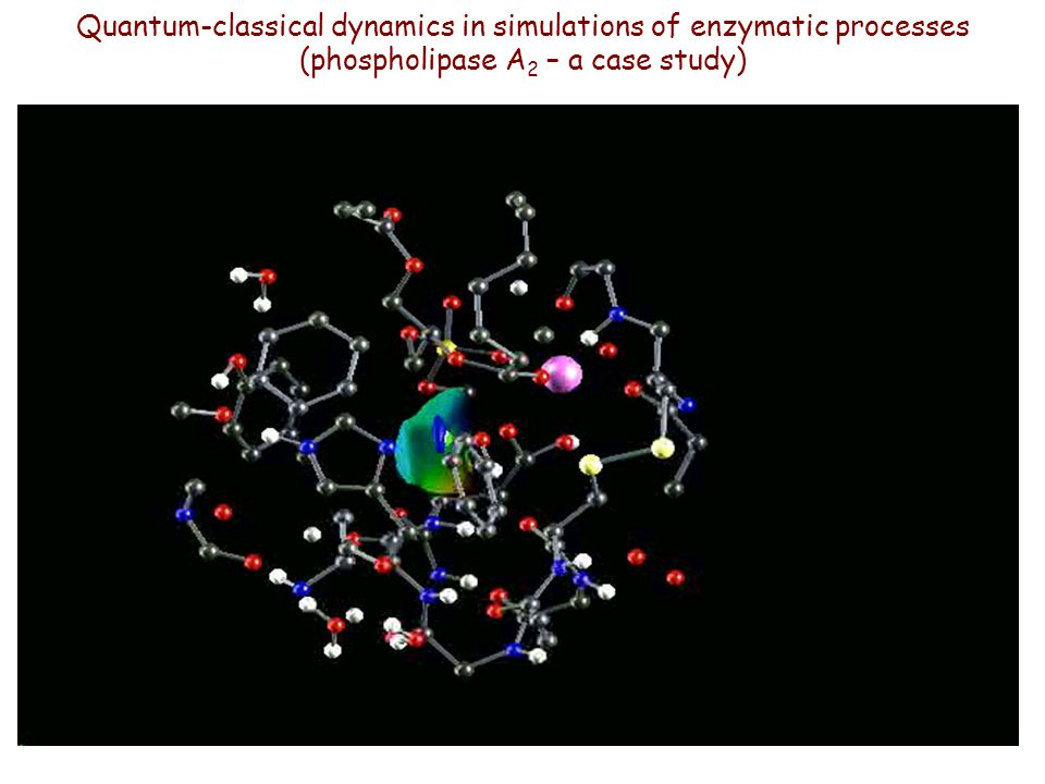 Quantum-classical dynamics in simulations of enzymatic processes (phospholipase A 2 – a case study)