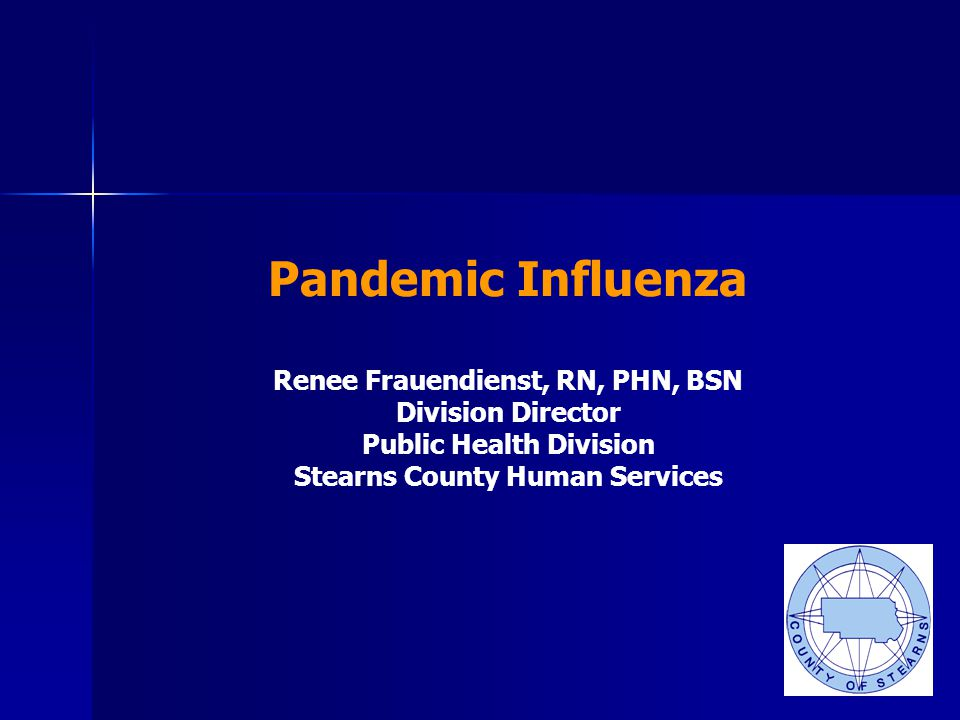 Pandemic Influenza Renee Frauendienst, RN, PHN, BSN Division Director Public Health Division Stearns County Human Services