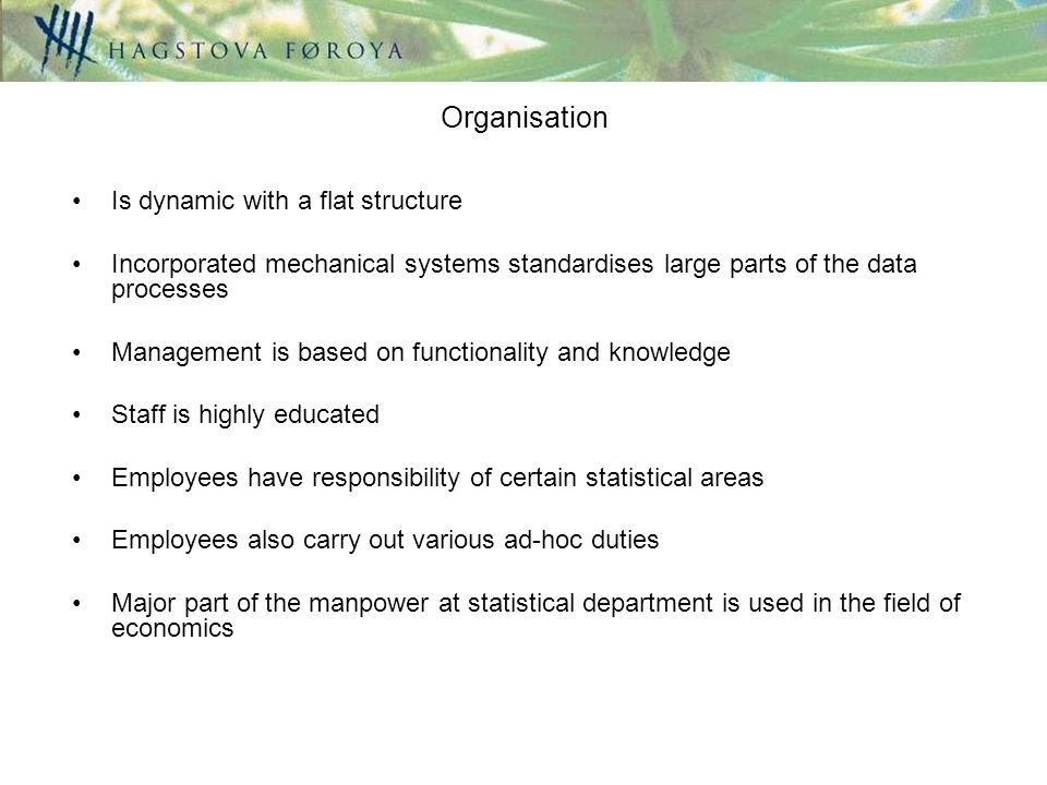 Organisation Is dynamic with a flat structure Incorporated mechanical systems standardises large parts of the data processes Management is based on functionality and knowledge Staff is highly educated Employees have responsibility of certain statistical areas Employees also carry out various ad-hoc duties Major part of the manpower at statistical department is used in the field of economics