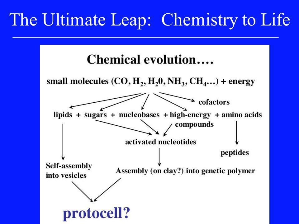 The Ultimate Leap: Chemistry to Life RNA (r