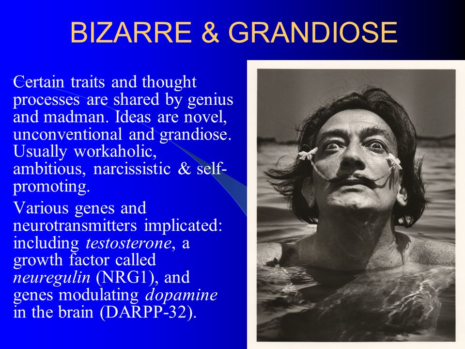 BIZARRE & GRANDIOSE Certain traits and thought processes are shared by genius and madman. Ideas are novel, unconventional and grandiose. Usually worka
