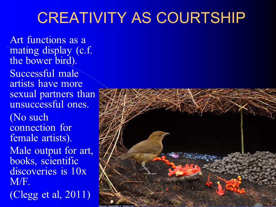 CREATIVITY AS COURTSHIP Art functions as a mating display (c.f.