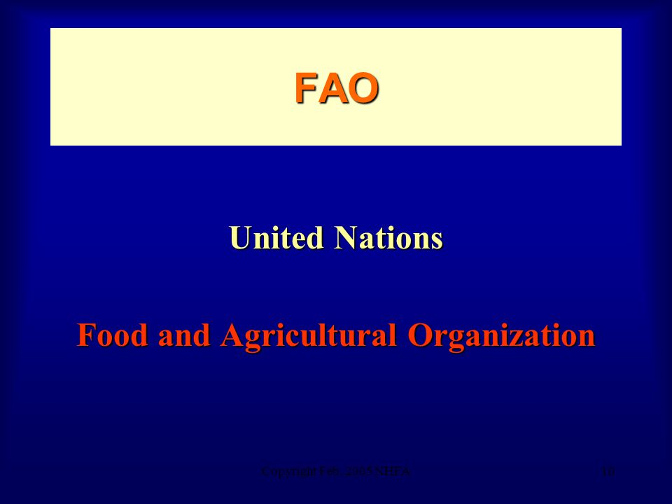 Copyright Feb. 2005 NHFA10 FAO United Nations Food and Agricultural Organization