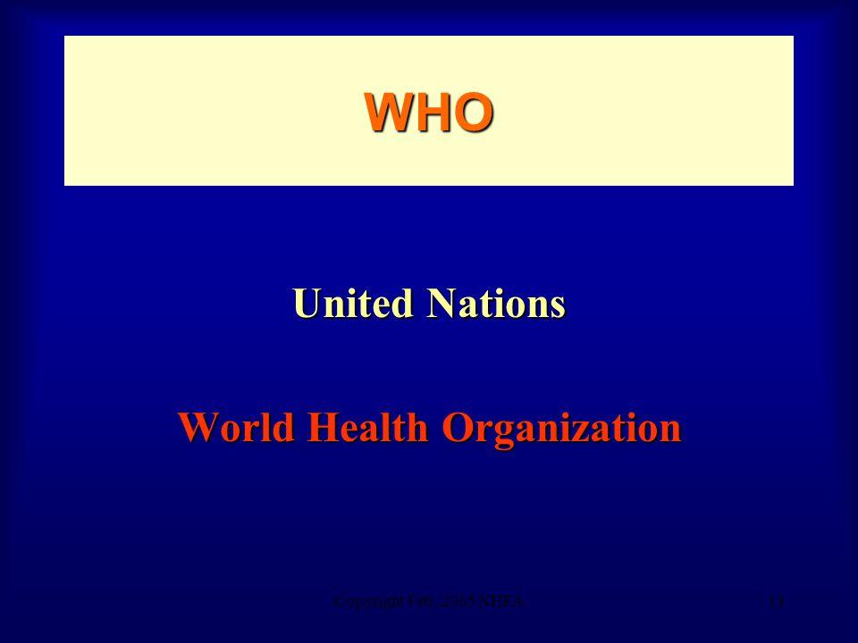 Copyright Feb. 2005 NHFA13 WHO United Nations World Health Organization
