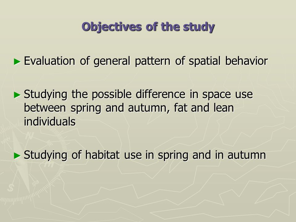 Objectives of the study ► Evaluation of general pattern of spatial behavior ► Studying the possible difference in space use between spring and autumn, fat and lean individuals ► Studying of habitat use in spring and in autumn