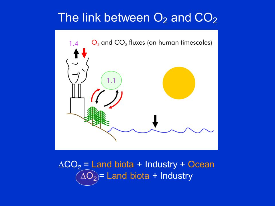 The link between O 2 and CO 2  CO 2 = Land biota + Industry + Ocean  O 2 = Land biota + Industry