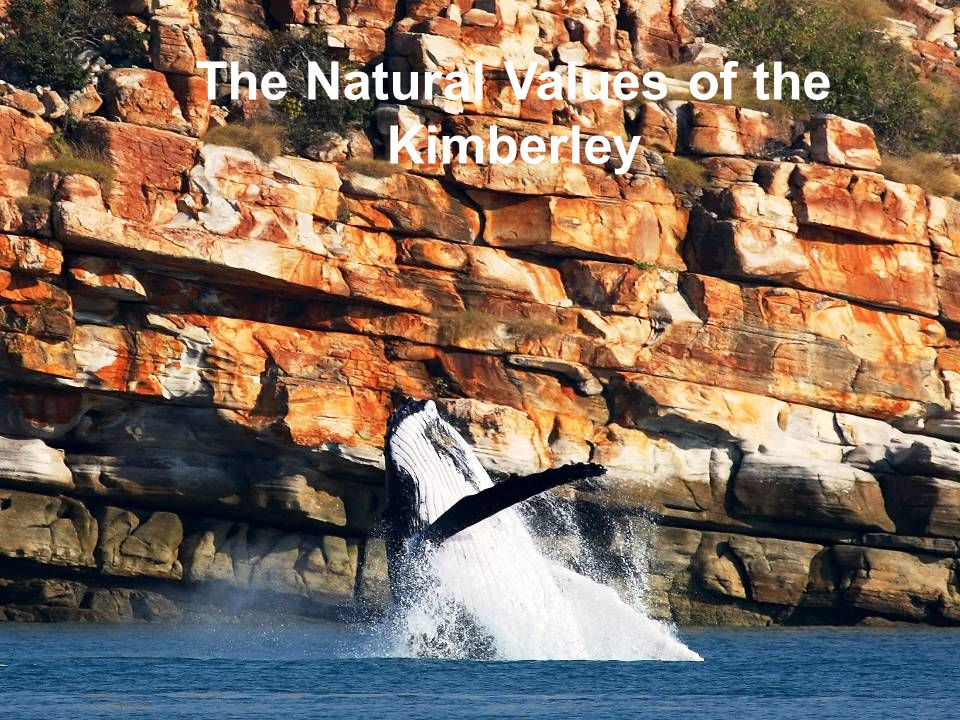 The Natural Values of the Kimberley