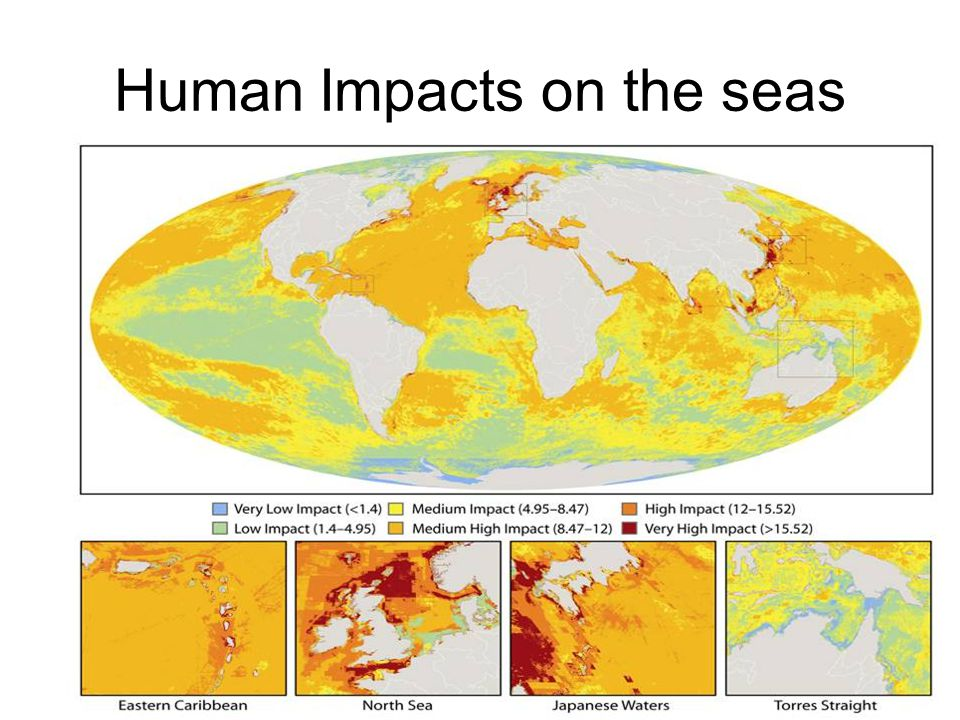 Human Impacts on the seas