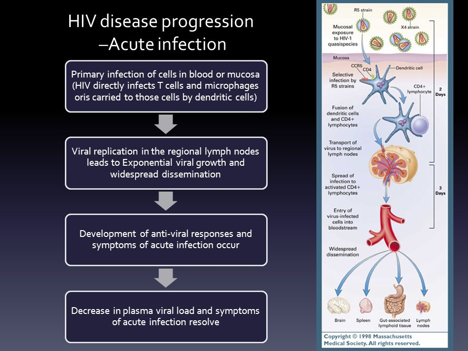 HIV disease progression -- Clinical Latency During this period of the disease, the immune systems remains competent at handling most infections with opportunistic microbes Few or no clinical manifestation.