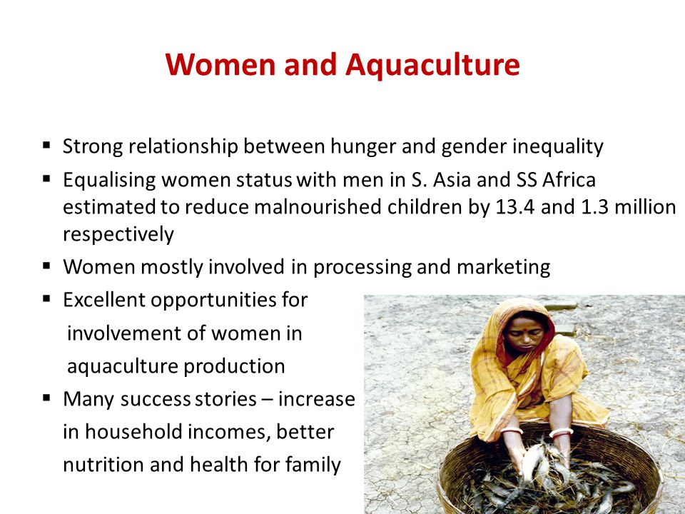 Women and Aquaculture  Strong relationship between hunger and gender inequality  Equalising women status with men in S.